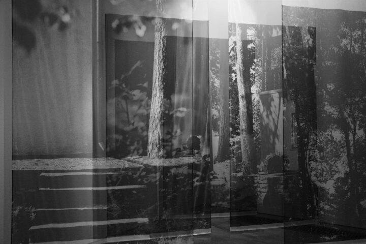 Garden Exile. A Study of the Sense of Nature