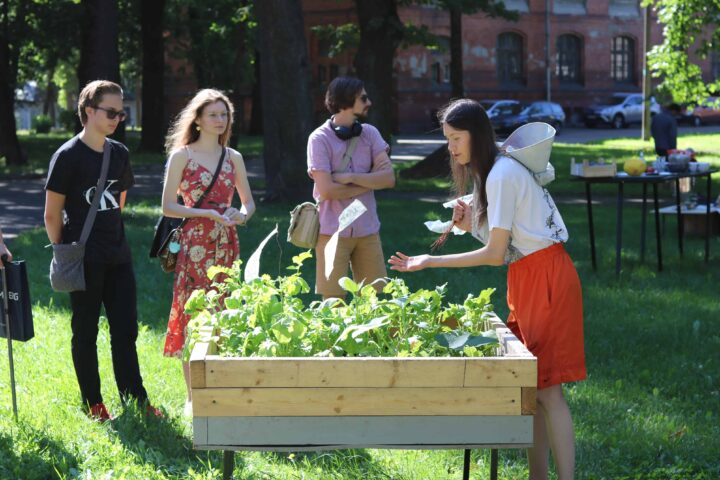 Kreenholm Plants – Community garden at Narva Art Residency (NART)