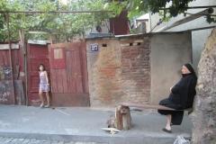 FIG 4 Amalgamations of Tbilisi - FM